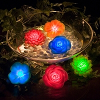 Floating LED Light Garden
