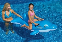 Blue Dolphin Ride-On
